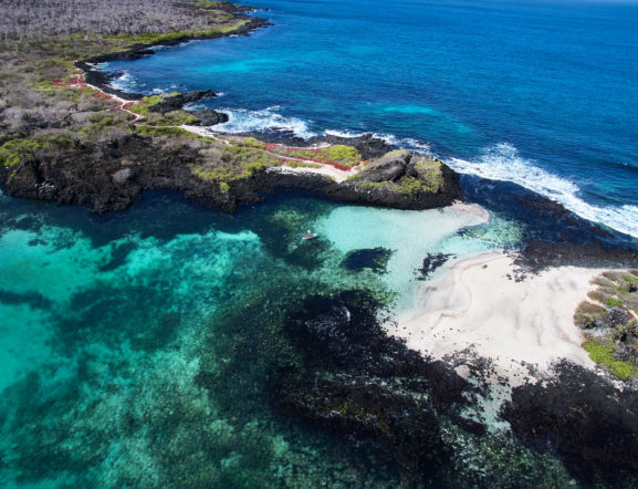 Galapagos Treasure: A Journey To the Islands' Gems