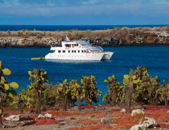 GALAPAGOS LAND & CRUISE: Visit 6 islands