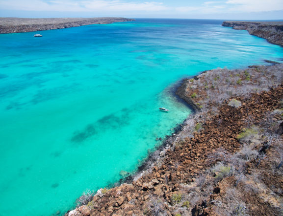 GALAPAGOS WONDERS: Visit 2 islands
