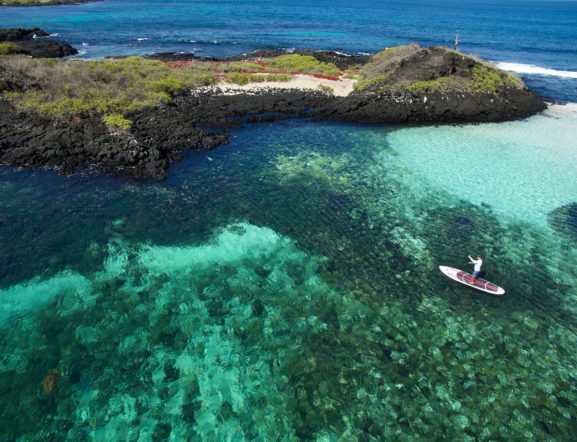 Galapagos Land, Sea & Underwater Adventures: Visit 3 islands