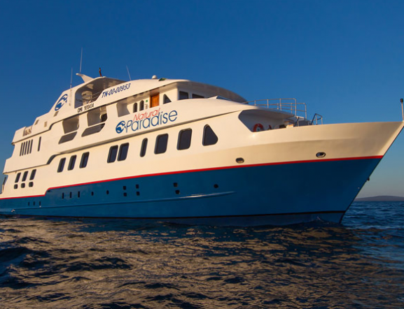 M/Y Natural Paradise (Special Promotion)