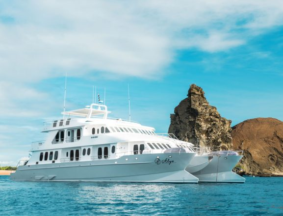 M/C Alya Luxury Cruise